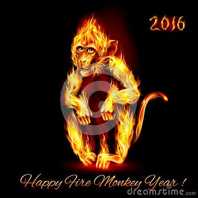 O ano do Macaco de Fogo – 2016